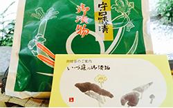 いづ藤の守口味醂粕漬け